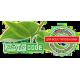 Phyto Code